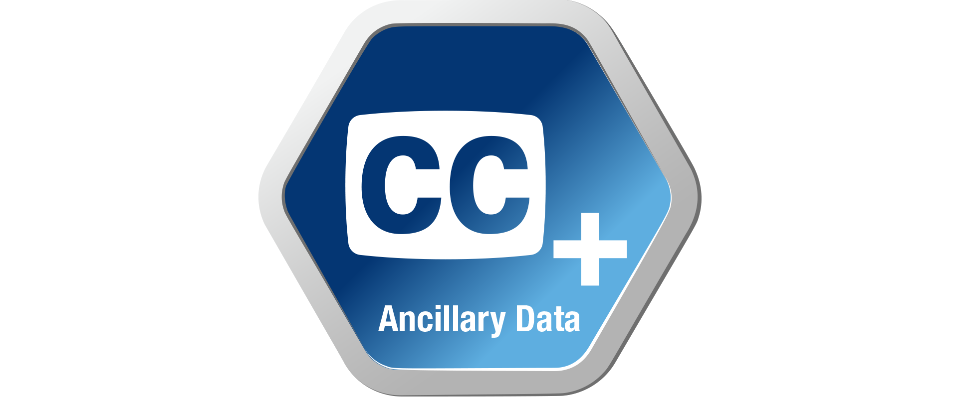 Advanced Ancillary Data Handling