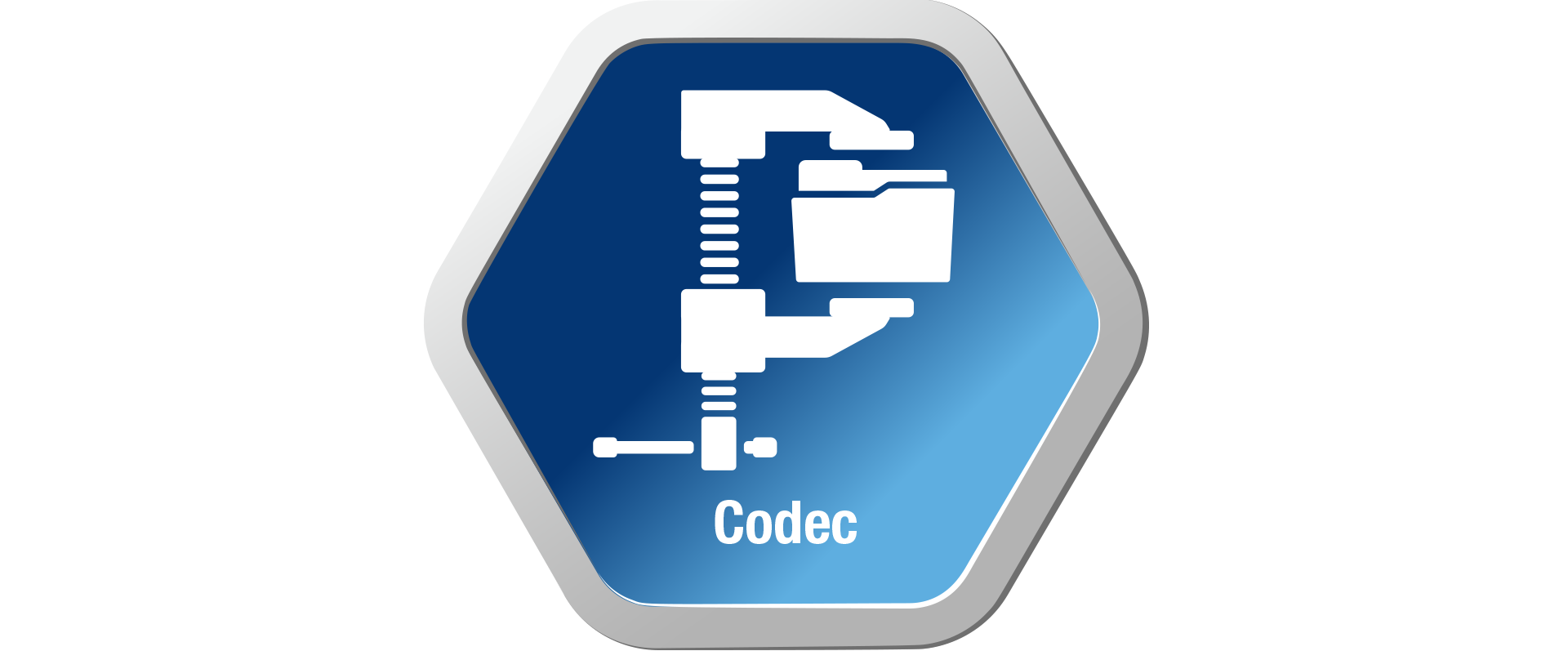 Extensive File Formats and Codecs
