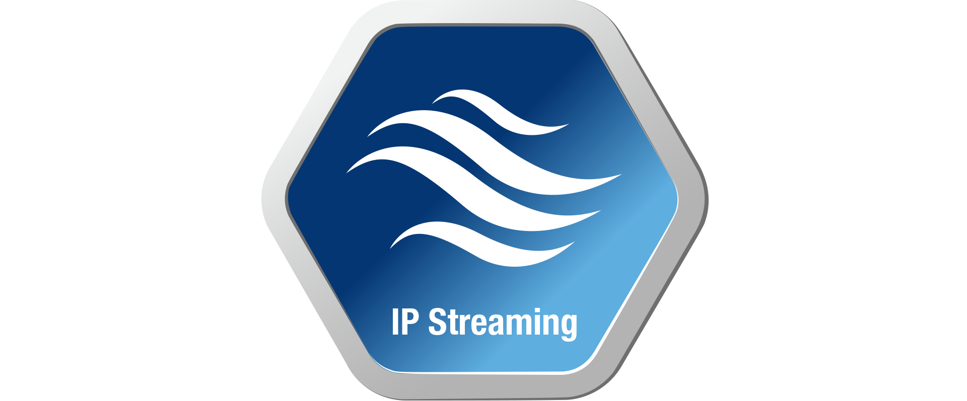 Built-In IP Streaming