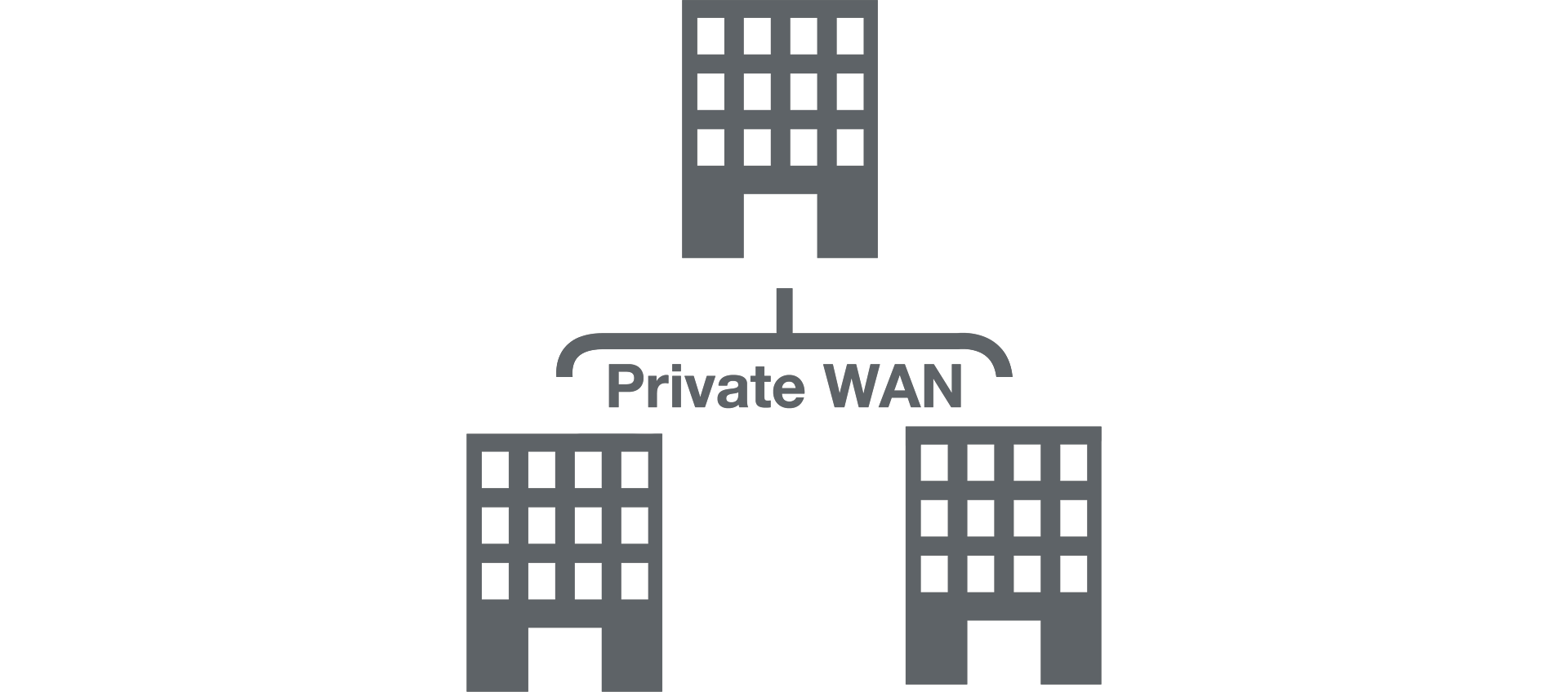 Private WAN Icon