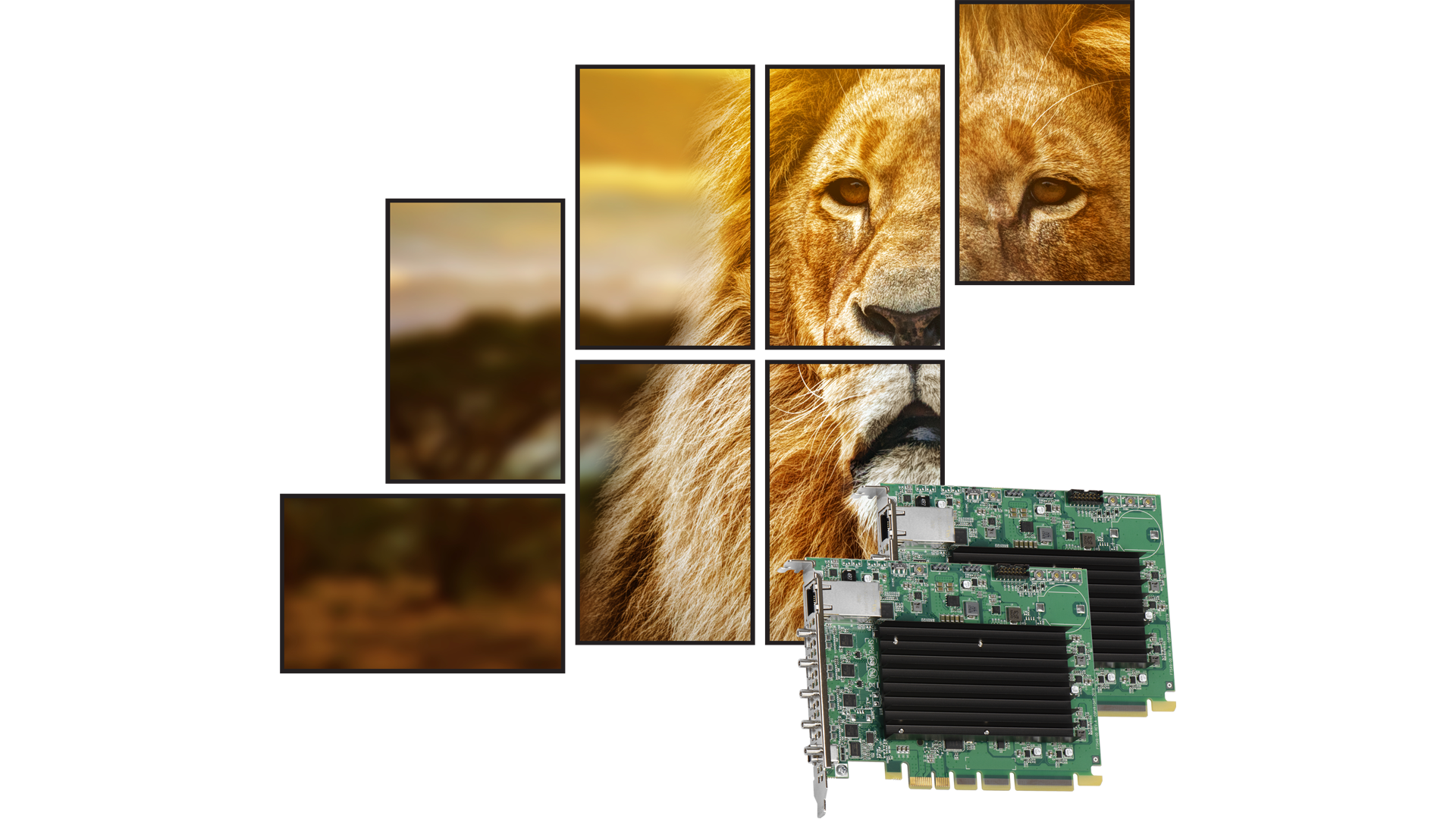 Drive Artistic Video Walls with Multiple Matrox QuadHead2Go Multi-Monitor Controller Cards